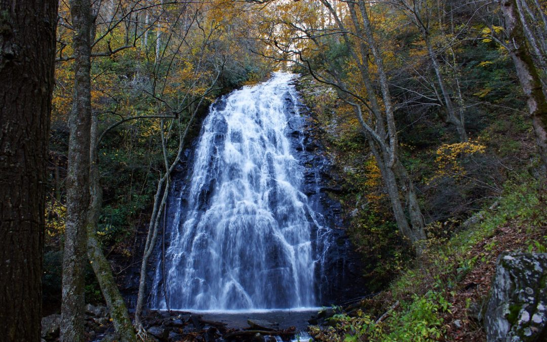 Great Smoky Mountains Waterfalls You Have To See